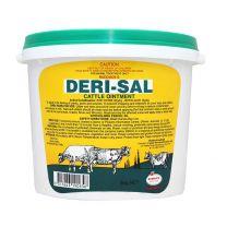 Rudduck Deri-Sal Ointment Cream 2kg